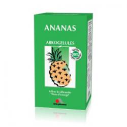ARKOGELULES ANANAS boîte de 45